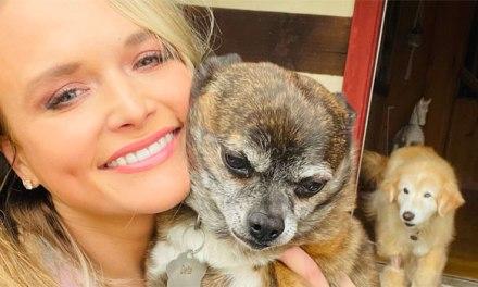 Miranda Lambert's MuttNation & Tractor Supply Co donate $250k to animal shelters