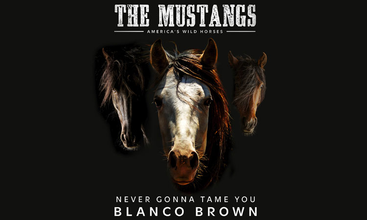 """Blanco Brown - Never Gonna Tame You (Original Song from """"The Mustangs: America's Wild Horses"""")"""