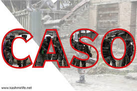 Forces launch CASO in Pulwama villages in south Kashmir