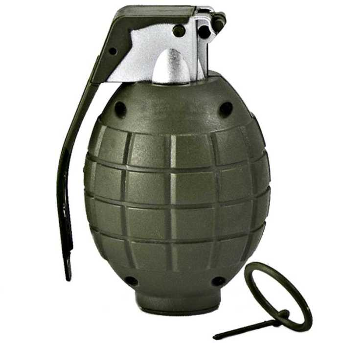 Grenade Attack on Polling Station in Pulwama