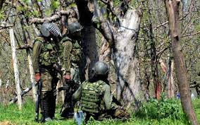 Top Jaish commander and IED expert killed in Shopian gunfight: Police