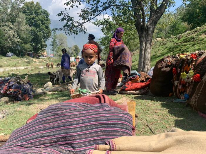 Shepherds moving out of meadows of Sonmarg due to growing tension