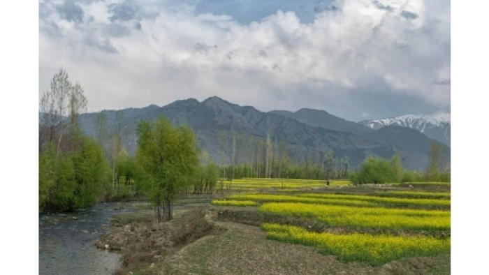 Jammu and Kashmir's Roshni Act is gone, leaving thousands fearing that they will become landless