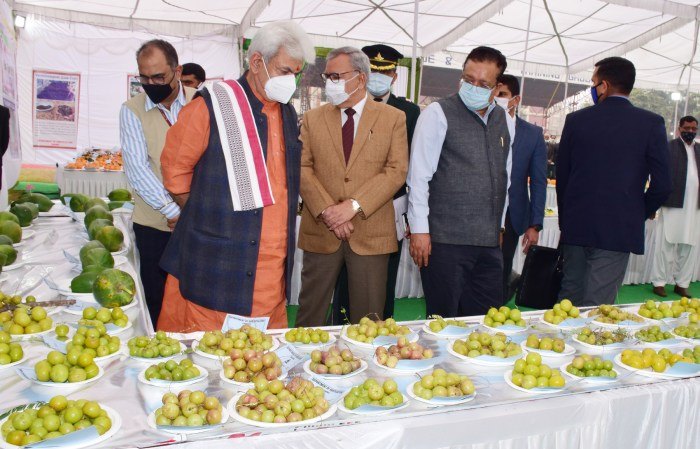 Agriculture sector to get more share of budget component in future: Lt Governor