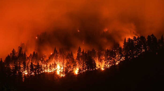 Thousands flee as wildfires engulf Greek island of Evia