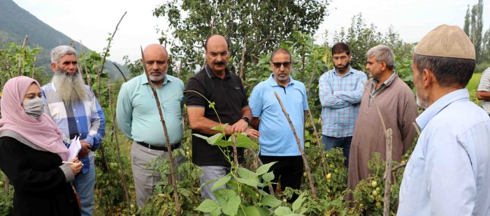 Director Agri Kmrtakes on-field assessment of various Agricultural activities across Srinagar
