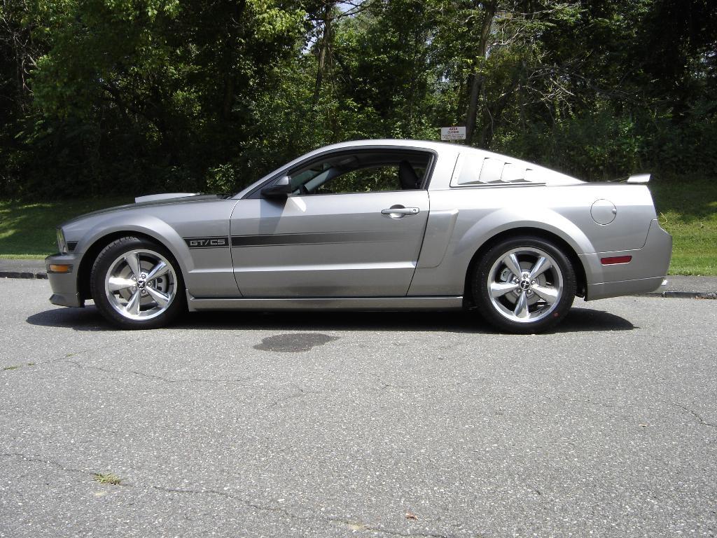 05 Mustang Cs 09 Gt Cowl