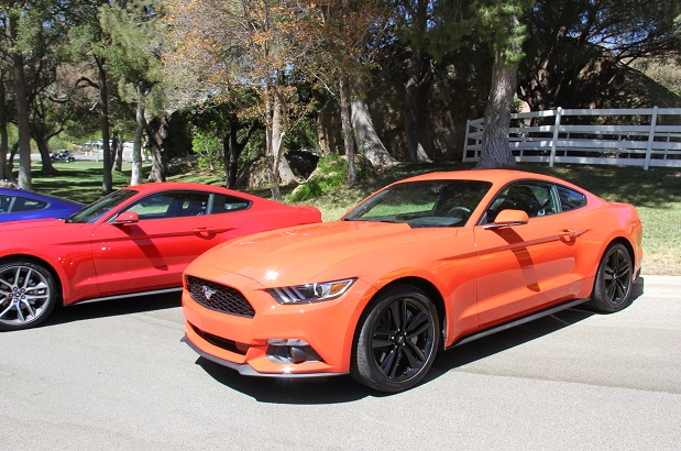 Reveling In The Colors Of The New Mustang In The Flesh The Mustang