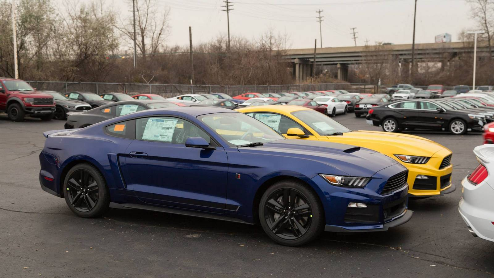 2015 roush mustang 26 the mustang source