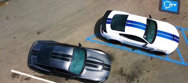 Twin Shelby Mustang Fastbacks Overhead