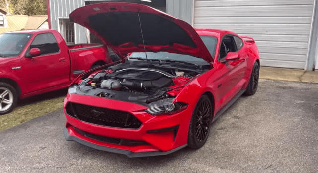 """Project Carnage"" 2019 Ford Mustang GT."