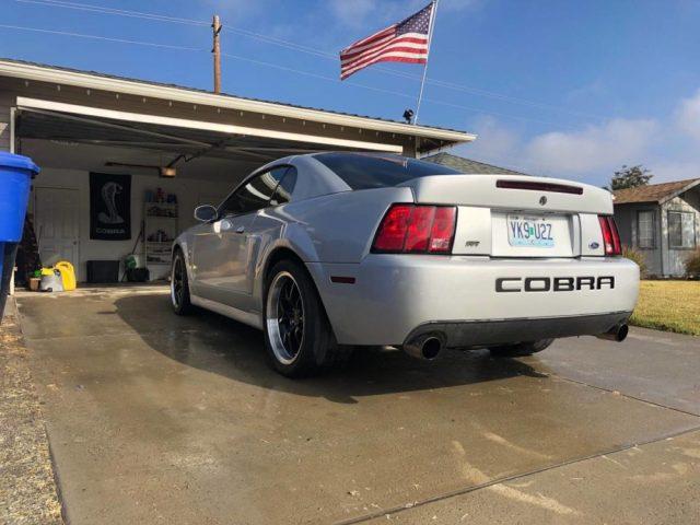 Whipple Mustang Cobra