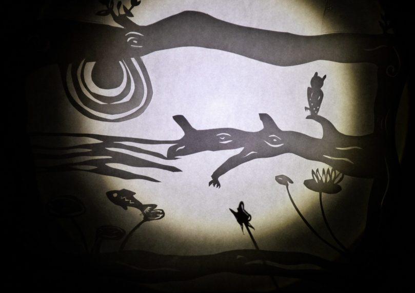 OwlFishShadow-min