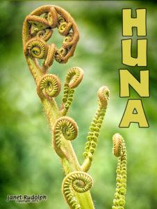 Unfolding Fern - Hawaii