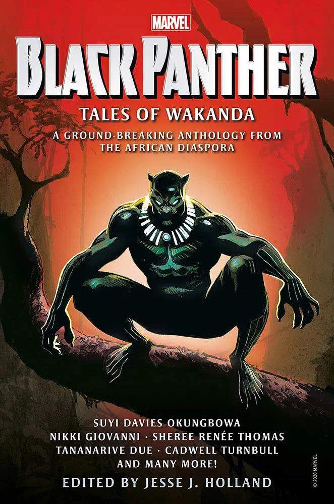 Tales_Of_Wakanda
