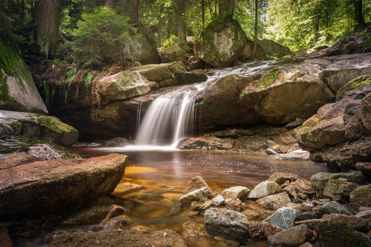 """Picture of Waterfall—Bankhead National Forest is known as """"Land of a Thousand Waterfalls""""."""