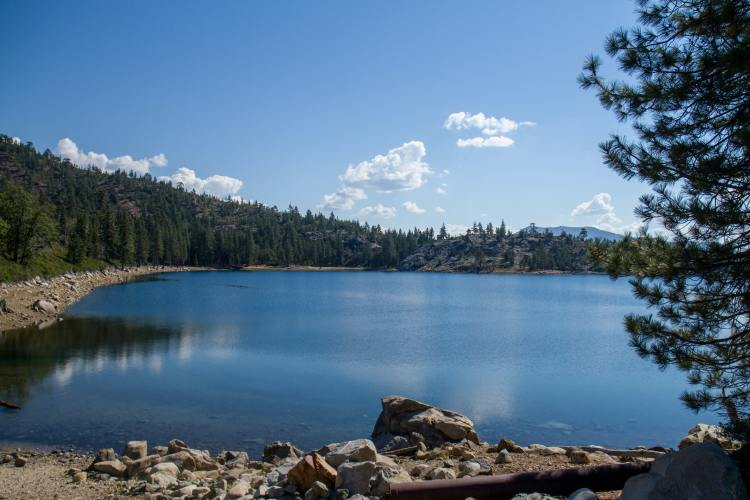 A small, peaceful lake in Tahoe National Forest