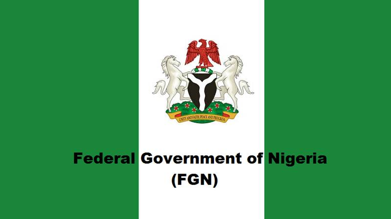 Fed Govt loses over $7b yearly to piracy - The Nation Newspaper