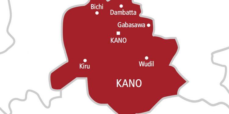 polio immunisation officials