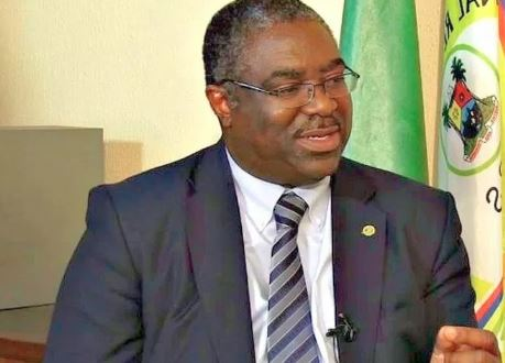 Nigeria loses $15b yearly to tax evasion, says Fowler