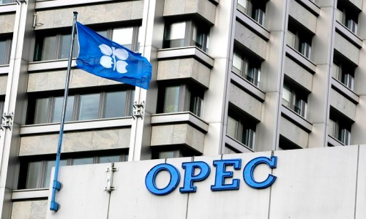 'Nigeria'll abide by OPEC's rules'