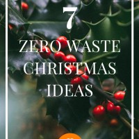 7 Zero Waste Christmas Ideas