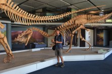 Here I am at the Iziko South African Museum in Cape Town. They had a fantastic exhibit on paleontology, focusing a lot on the local Permian Karoo fauna. They had some dinosaur fossils as well, including these mounted casts of the spinosaur Suchomimus attacking a juvenile Jobaria, a type of sauropod, long-necked dinosaur.