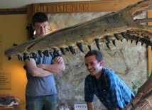 Zach Evens and Zack Neher for scale next to a mounted skull of the mosasaur Tylosaurus at the Morrison Natural History Museum in Colorado with Masaki Kleinkopf Photo Credit Mona Kamath