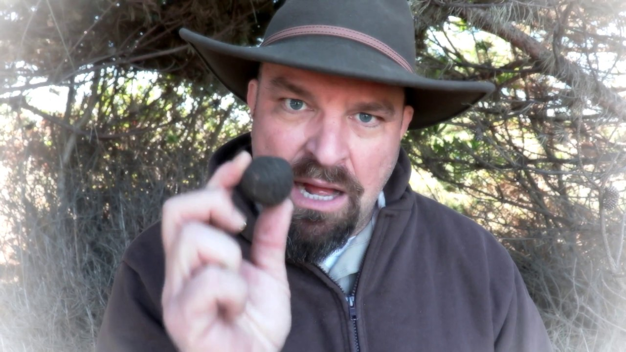 Griff's Wild Tips: How to Make Seed Bombs (AKA Seed Balls).