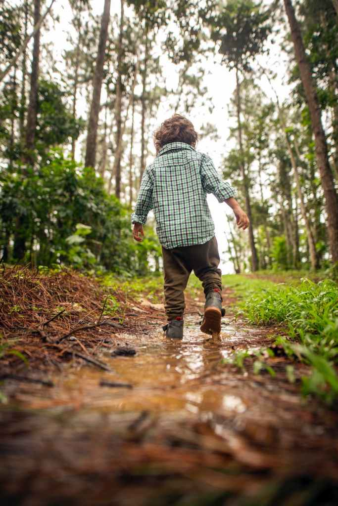 anonymous little boy walking on dirty path in forest