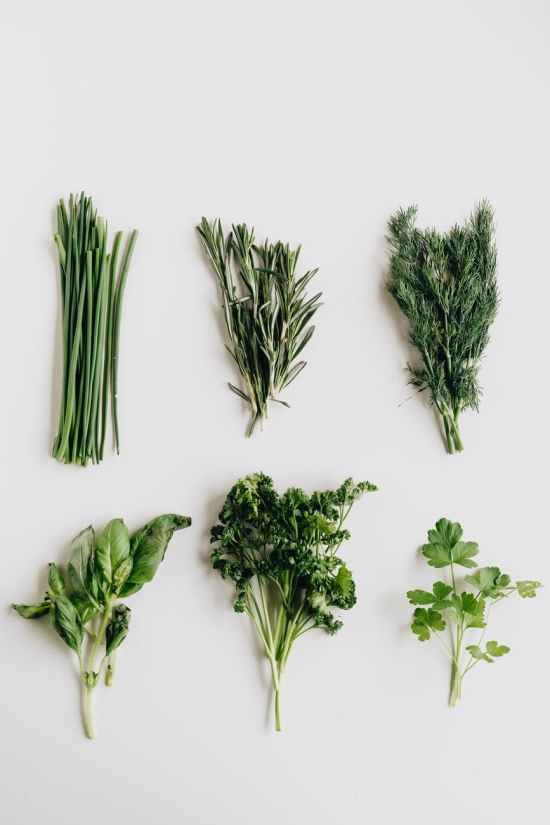 photo of assorted herbs