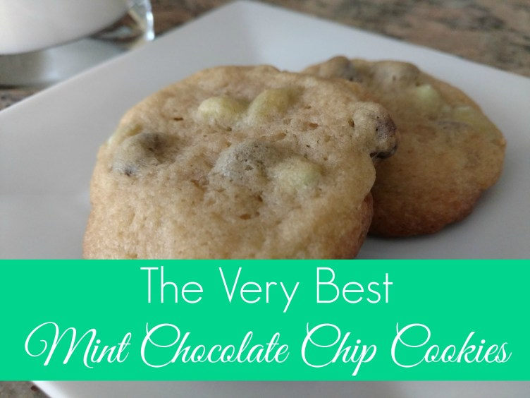 The Very Best Mint Chocolate Chip Cookies
