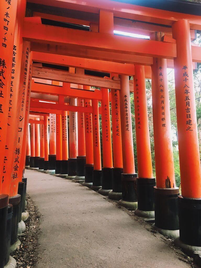 fushimi inari taisha kyoto travel tips, what to do in kyoto