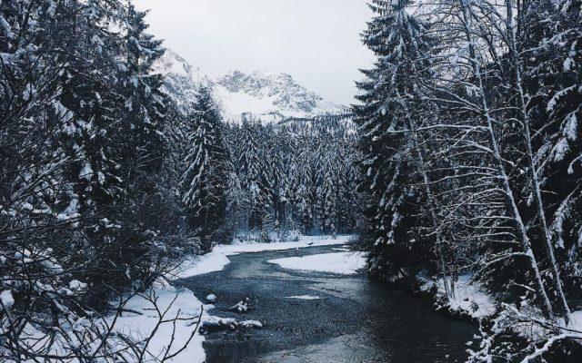 What to do in Flachau, Austria