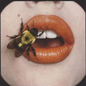 irving penn - bee 1995