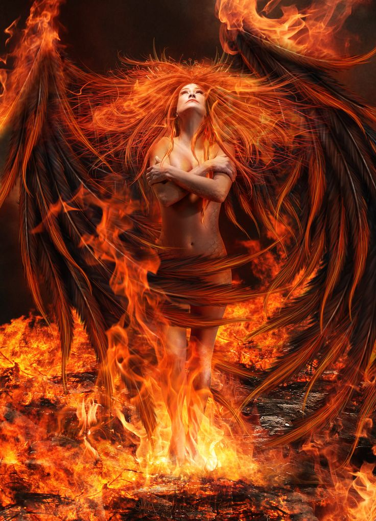Letting Go: A Personal Story of the Phoenix Rising – The Nephilim