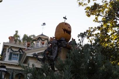 np_diza_halloween-7