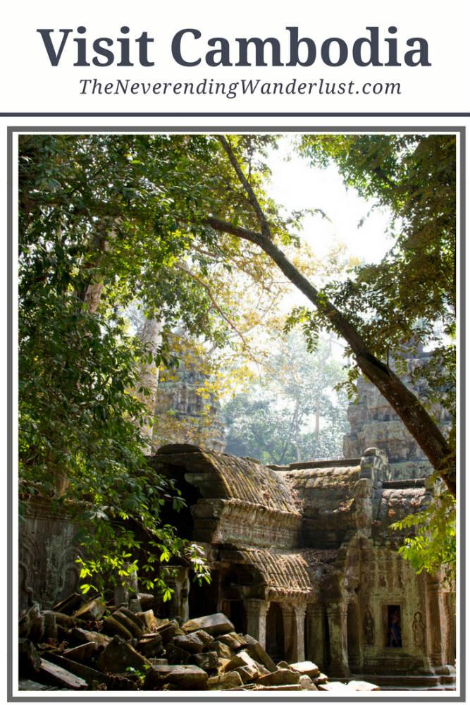 Ta Prohm Angkor Wat Temple Cambodia