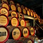 Guinness Brewery Tour Dublin