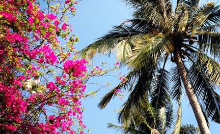 Phu Quoc Island: Lovely Little Getaway