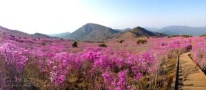 Mt. Biseulsan, South Korea