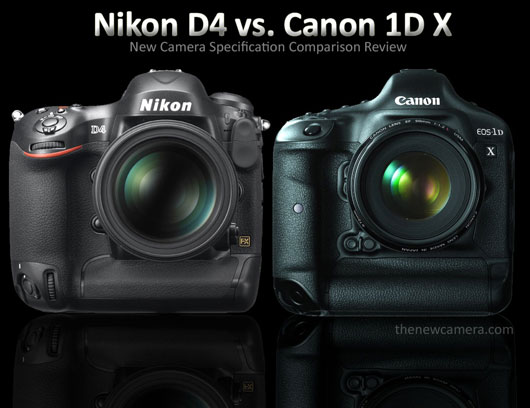 Nikon D4 Comparison review