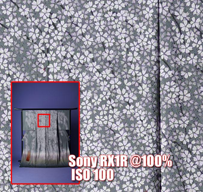 Sony-RX1-R-100