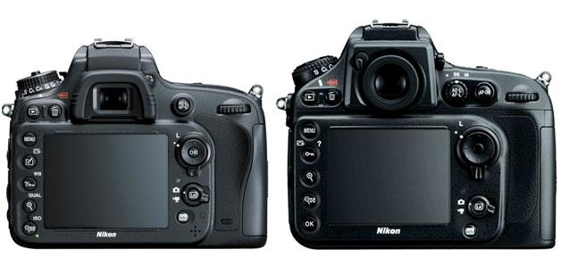 Nikon-D610-vs-Nikon-D800-image-2