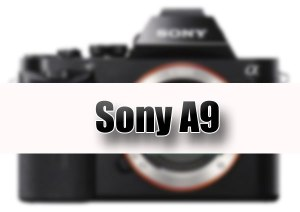 Sony-A9-Mirrorless-coming