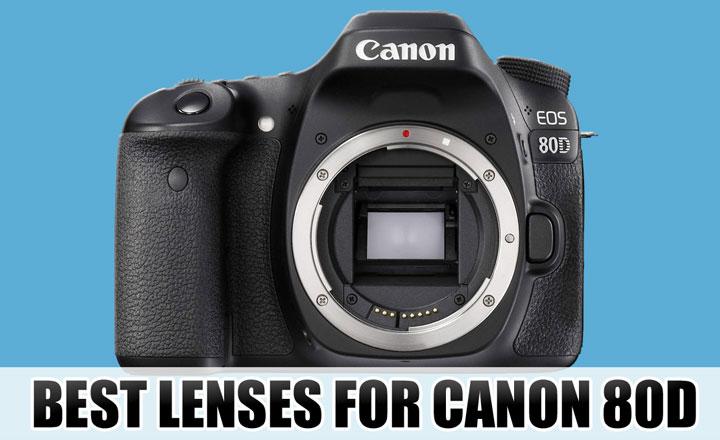 Best lenses for Canon 80D  sc 1 st  The New Camera & Best Lenses for Canon 80D Camera « NEW CAMERA