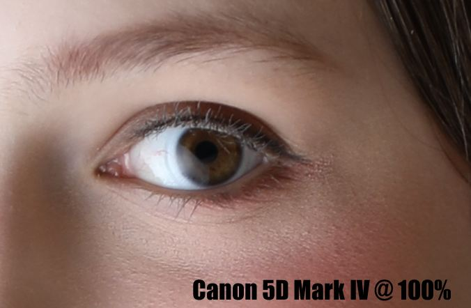 Canon 5D Mark IV Sample image