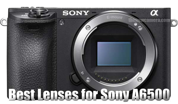 image-best-lenses-for-sony