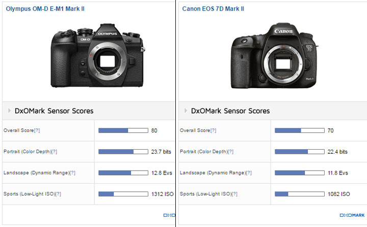 E1-Mark-II-vs-7D-Mark-II-im