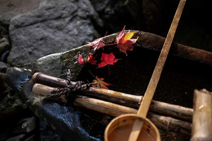 Fuji X100T Sample Images 4